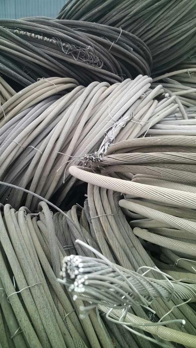 常年求购钢芯铝绞线